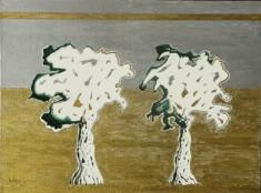 Le querce bianche